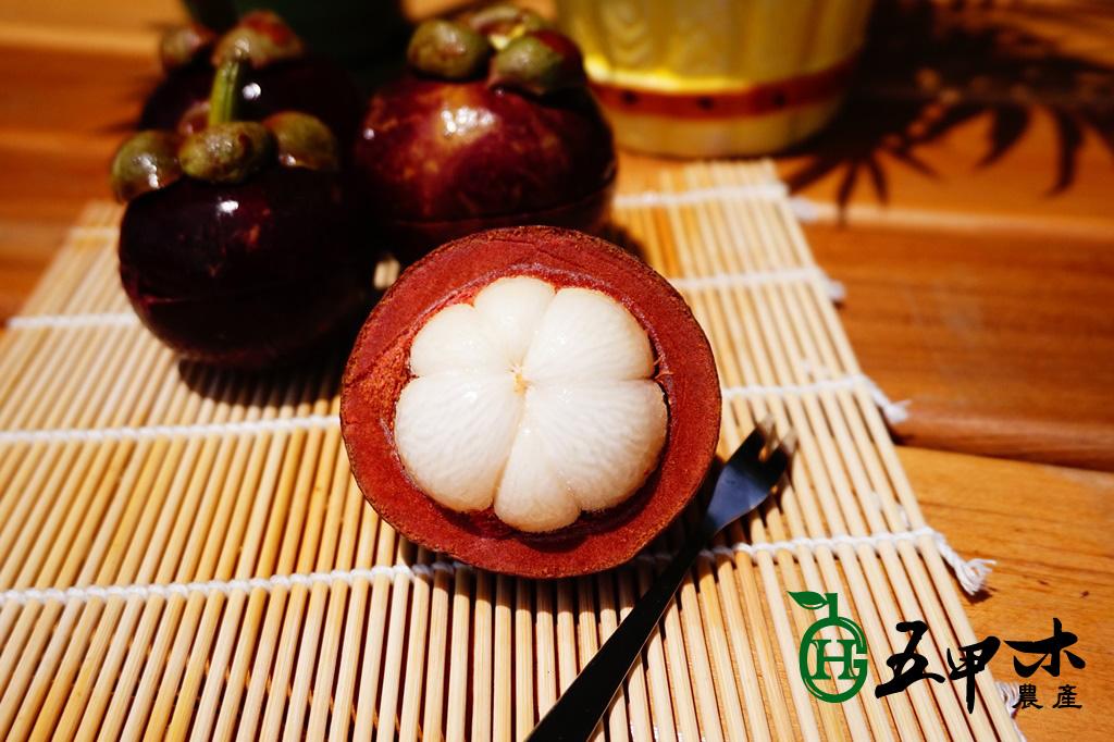 【五甲木官網】極鮮冷凍山竹 6包入 團購價166包/元【免運】